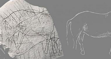 Une pierre préhistorique gravée avec des chevaux à été trouvés en France